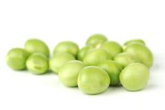 Pea bean isolated on white Royalty Free Stock Photo