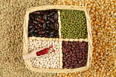 Pea and beans Royalty Free Stock Photos