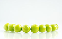 Pea beans row Royalty Free Stock Photography