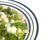 Pea Broad Bean and Asparagus Risotto Royalty Free Stock Image