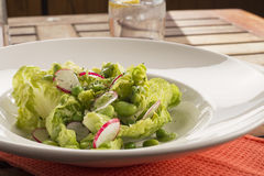 Pea & broad bean salad Royalty Free Stock Photos