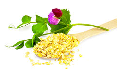 Pea flakes in a spoon with a flower Royalty Free Stock Image