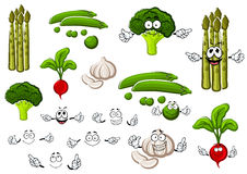 Pea, garlic, broccoli, radish and asparagus. Healthful cartoon fresh green pea pods with sweet grains, spicy garlic, curly broccoli, pungent red radish and Royalty Free Stock Photo
