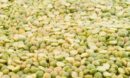 Pea green Stock Image