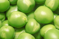 Pea green peas close-up as a background. Pea green  peas close-up as a background Royalty Free Stock Images