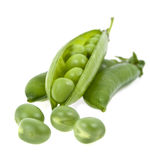 A pea green is in a pod. On a white background Royalty Free Stock Photos