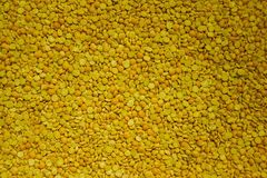 Pea groats. Brightly yellow pea groats. Background of chopped dried peas royalty free stock photo