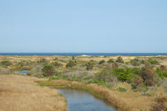 Pea Island. National Wildlife Refuge is located in the outer banks islands of North Carolina. It is part of the Cape Hatteras National Seashore stock photography