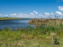 Pea Island National Wildlife Refuge immagini stock libere da diritti