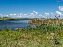 Pea Island National Wildlife Refuge imagens de stock royalty free
