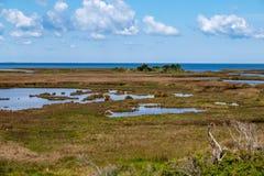 Pea Island National Wildlife Refuge imagem de stock