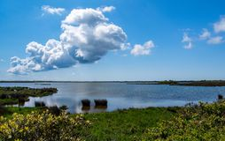 Pea Island National Wildlife Refuge immagine stock libera da diritti