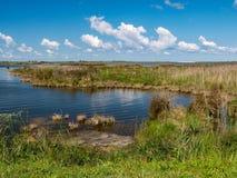Pea Island National Wildlife Refuge fotografie stock libere da diritti