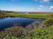 Pea Island National Wildlife Refuge royalty-vrije stock foto's