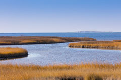 Pea Island NWR Royalty Free Stock Photos