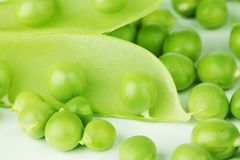 Pea isolated on white Royalty Free Stock Images