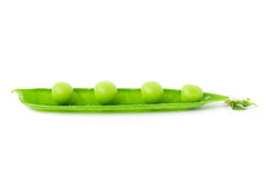 Pea Pod Stock Photography
