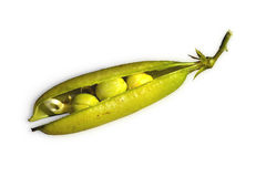 Pea pod Royalty Free Stock Photography