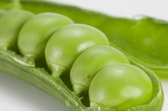Pea in pod. Very close image of fresh pea in pod Royalty Free Stock Image