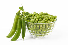 Pea Pod Stock Photo