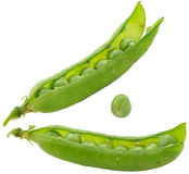 Pea pod. Pods of peas on a white background Stock Photography