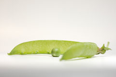 Pea and pod. One pea in front of open green pod Stock Photo