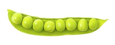Pea pod isolated on white background Stock Images