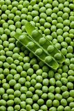 Pea pod with peas Royalty Free Stock Images