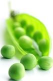 Pea pod and peas. Fresh green pea pod and peas on white background Royalty Free Stock Images
