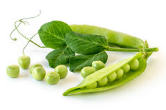 Pea pod. On a white background royalty free stock images