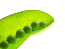 Pea pods. Close-up of green transparent pea pod on white background Royalty Free Stock Images