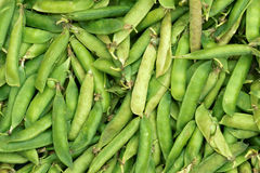 Pea pods Royalty Free Stock Image