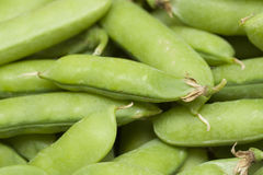 Pea pods Royalty Free Stock Photos