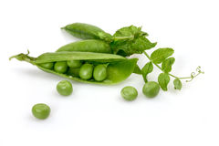 Pea pods on a white background. Green peas in pods on a white background to highlight Royalty Free Stock Images