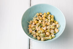 Pea seeds with sprouts in a bowl Stock Photo