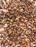 Pea shingle gravel. Pea shingle is a gravel often used around pathways and in the garden as a barrier to slugs stock photos