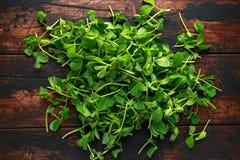 Pea Shoots verde crudo dulce en fondo de madera rústico Imágenes de archivo libres de regalías