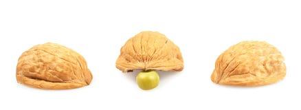 Pea under one of three walnut shells Stock Image