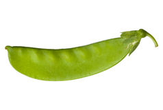 Pea vegetable isolated on white Royalty Free Stock Images