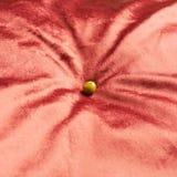 Pea on a velvet cushion Stock Image