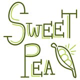 Pea Writing Text Message Peapod dulce Fotos de archivo libres de regalías