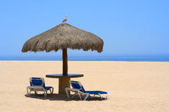 Peace. Palapa on a beautiful beach, a seagull sitting on top Stock Images
