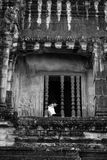 The Peace of Angkor Wat in Siem Reap Cambodia Royalty Free Stock Image