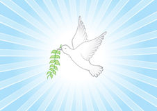 Peace background Royalty Free Stock Photos