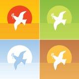 Peace Bird Stock Photo