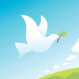 Peace Bird Stock Photography