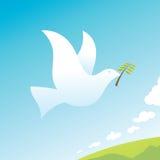 Peace Bird Stock Photography