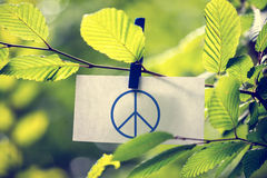 Peace concept Royalty Free Stock Image