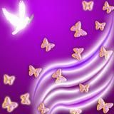 Peace dove Stock Photos