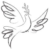Peace Dove. A free flying of peace dove stock illustration